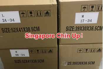 Auto BiPAP 30ST Medical Ventilator export to Singapore